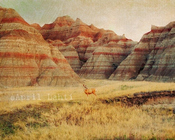 Badlands Landscape with Deer - Fine Art Photograph
