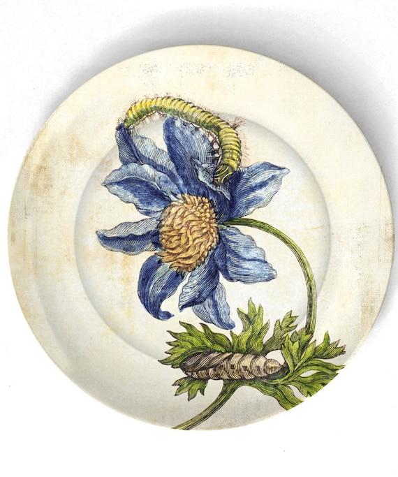 Botânico de 1600 artwork II - reproduzida em 10 polegadas Placa de Melamina