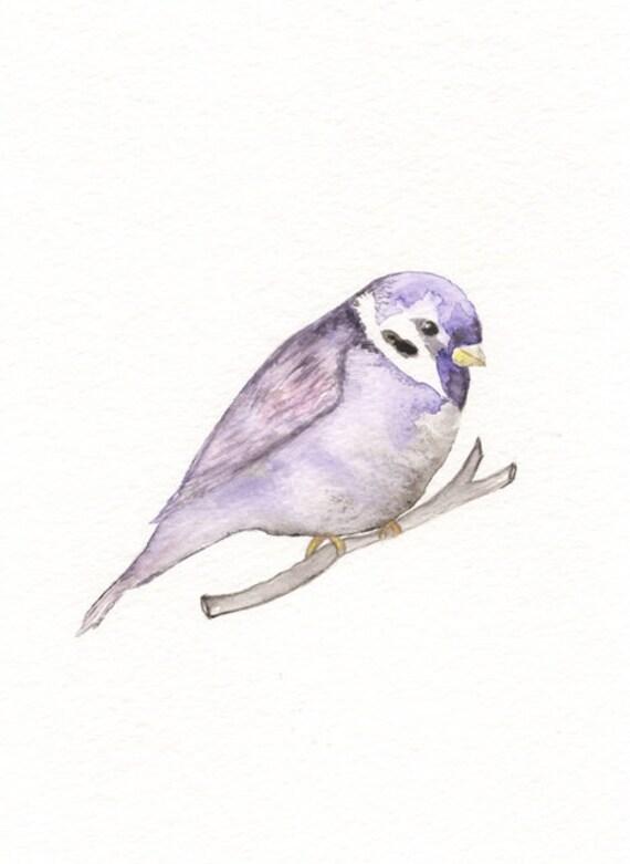 Purple Sparrow/5x7 Watercolor Print