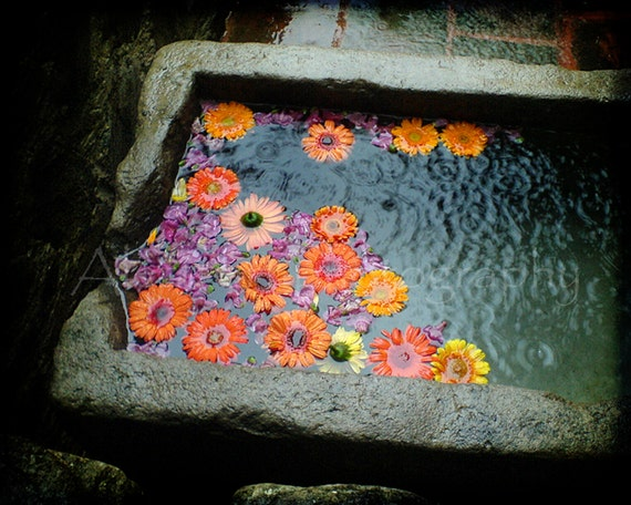 "Travel photography  - La Antigua Guatemala photograph - Shabby chic rustic colors - 8x10 ""Molcajete"""